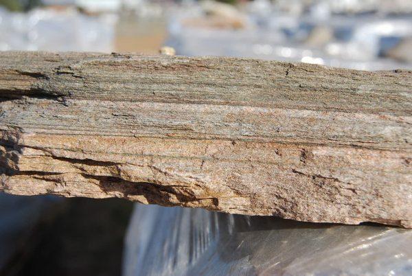 Beige Quartzite Cladding Closeup